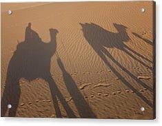 Shadows Of A Camel Train, Thar Desert Acrylic Print by Peter Adams