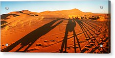 Shadows Of Camel Riders In The Desert Acrylic Print by Panoramic Images