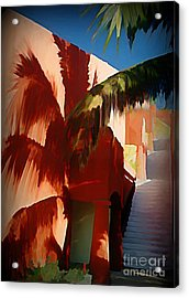 Shadows Of Palm Leaves Acrylic Print by John Malone