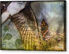 Shadows Of Yesterday Acrylic Print by Liz  Alderdice