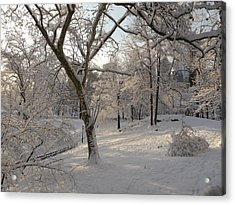 Acrylic Print featuring the photograph Shadows On Snow by Winifred Butler