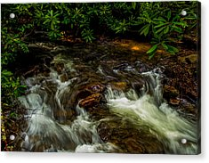 Shady Brook Acrylic Print by Russ Burch
