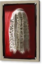 Shakira's Skirt Acrylic Print