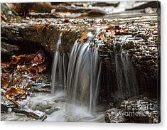 Shale Creek In Autumn Acrylic Print
