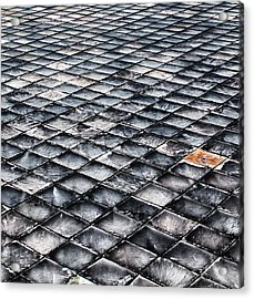 Acrylic Print featuring the photograph Shaled by David Stine