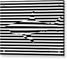 Shark Optical Illusion Acrylic Print