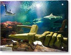 Shark Tank Trident Acrylic Print by Bill Pevlor