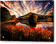 Sharp Top Acrylic Print