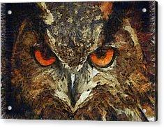 Sharpie Owl Acrylic Print