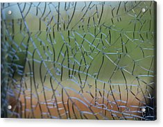 Acrylic Print featuring the photograph Shattered by Amber Kresge