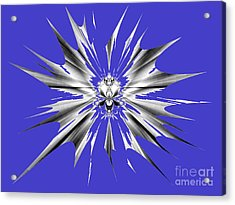 Shattered Acrylic Print by Renee Trenholm