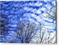 Acrylic Print featuring the photograph Shattered Skies by Candice Trimble