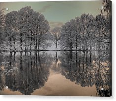 Shaw Nature Reserve Acrylic Print by Jane Linders