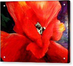 She Wore Red Ruffles Acrylic Print by Gail Kirtz