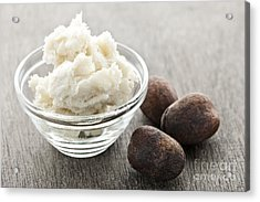 Shea Butter And Nuts  Acrylic Print by Elena Elisseeva