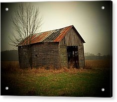 Shed In Pasture Acrylic Print by Michael L Kimble