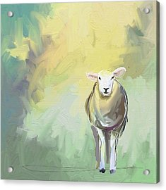 Sheep Dressed In Light Acrylic Print