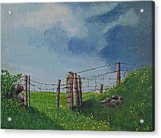 Sheep Field Acrylic Print by Barbara McDevitt