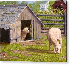 Acrylic Print featuring the painting Sheep House by Joe Bergholm