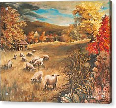 Sheep In October's Field Acrylic Print by Joy Nichols