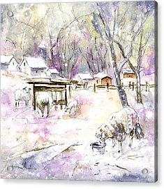 Sheep In Snow In Germany Acrylic Print by Miki De Goodaboom