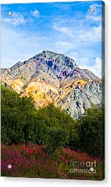 Sheep Mountain Alaska   Acrylic Print