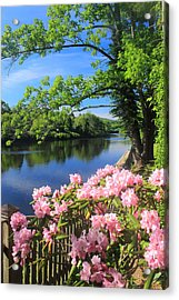 Shelburne Falls Deerfield River And Bridge Of Flowers Acrylic Print by John Burk