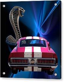Shelby Cobra Gt-500 Acrylic Print