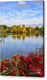 Sheldon Lake Acrylic Print