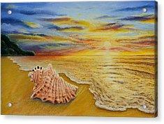 Shell At Sunset Acrylic Print