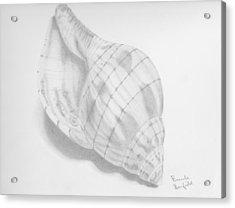 Shell Acrylic Print