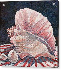 Shell Collection Acrylic Print by Micheal Jones