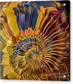Shell Explosion Acrylic Print