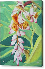 Acrylic Print featuring the painting Shell Ginger by Margaret Saheed