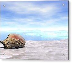 Shell Acrylic Print by John Pangia