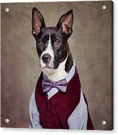 Shelter Pets Project - Petey Acrylic Print by Tammy Swarek