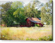 Sheltered Acrylic Print