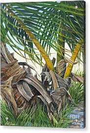 Sheltering Palms Acrylic Print by Bob  George