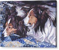 Sheltie Love Acrylic Print