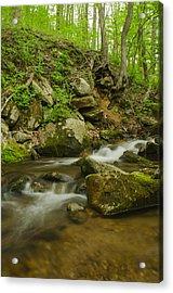 Shenandoah Stream No. 2 Acrylic Print
