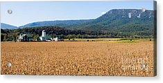 Shenandoah Valley Panorama Acrylic Print