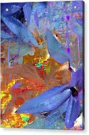 Shey  Acrylic Print