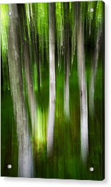 Shifted Perspective Acrylic Print by Serge Skiba