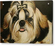 Acrylic Print featuring the painting Shih Tzu Puppy Portrait #2 by Melinda Saminski