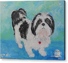Acrylic Print featuring the painting Shih Tzu Yoda by Doris Blessington