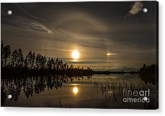 Acrylic Print featuring the photograph shine like a Halo by Rose-Maries Pictures