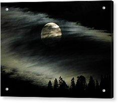 Shining Through Acrylic Print by Leah Moore