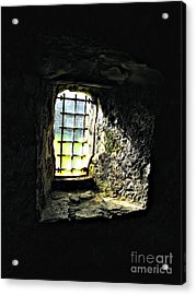 Shining Through Acrylic Print by Louise Peardon