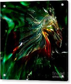 Shining Through The Glass Acrylic Print by Kitrina Arbuckle