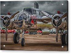Shiny Mitchell Acrylic Print by Gareth Burge Photography